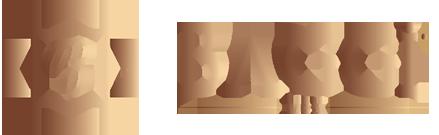 BAGGi-MEN-Logo